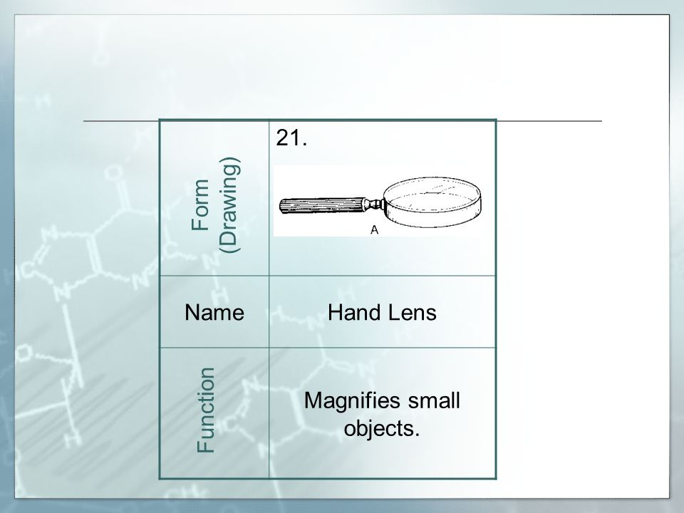 21. NameHand Lens Magnifies small objects. Form (Drawing) Function