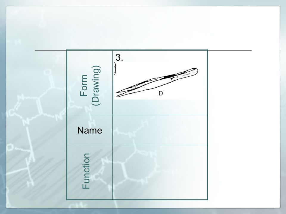3. Name Form (Drawing) Function