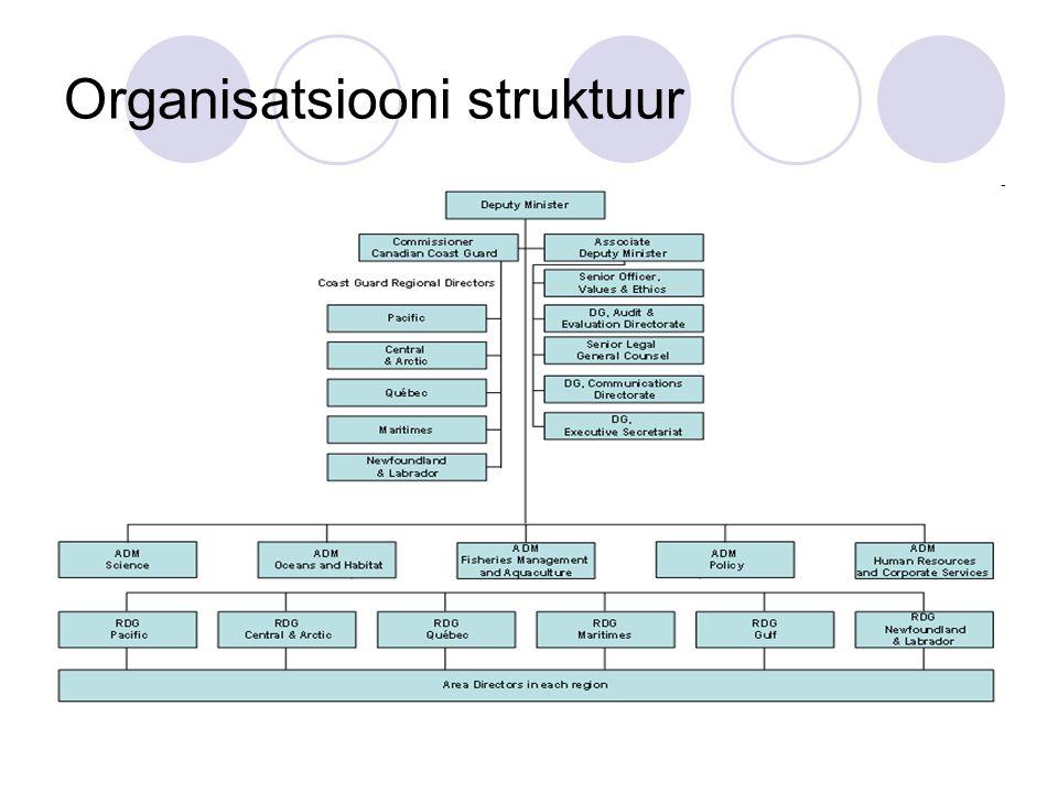 Organisatsiooni struktuur