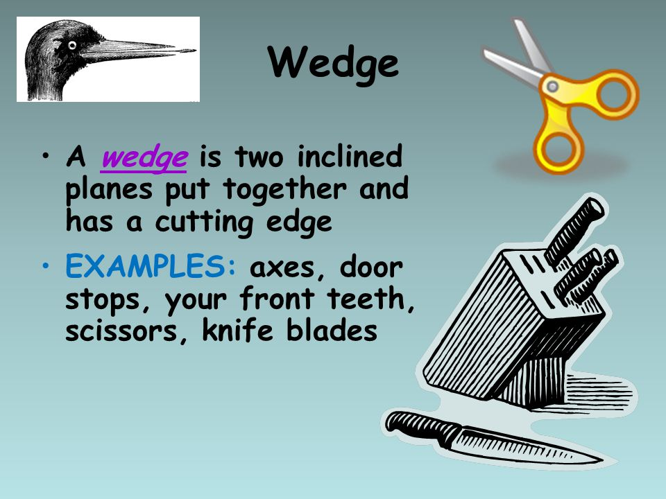 A wedge is two inclined planes put together and has a cutting edge EXAMPLES: axes, door stops, your front teeth, scissors, knife blades