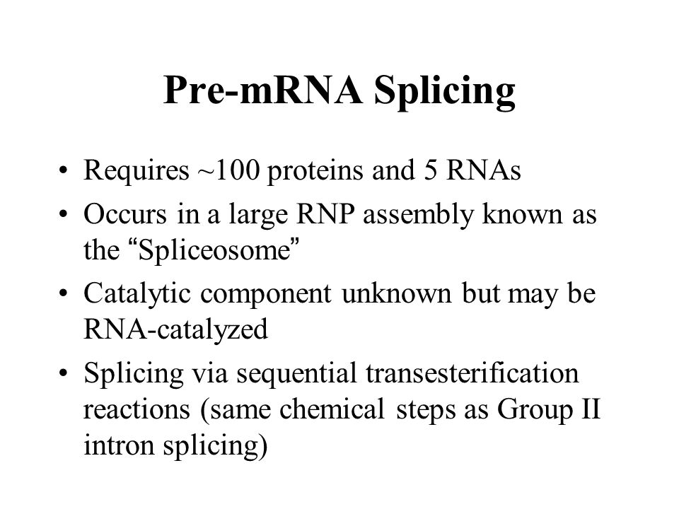 """Pre-mRNA Splicing Requires ~100 proteins and 5 RNAs Occurs in a large RNP assembly known as the """" Spliceosome """" Catalytic component unknown but may be"""