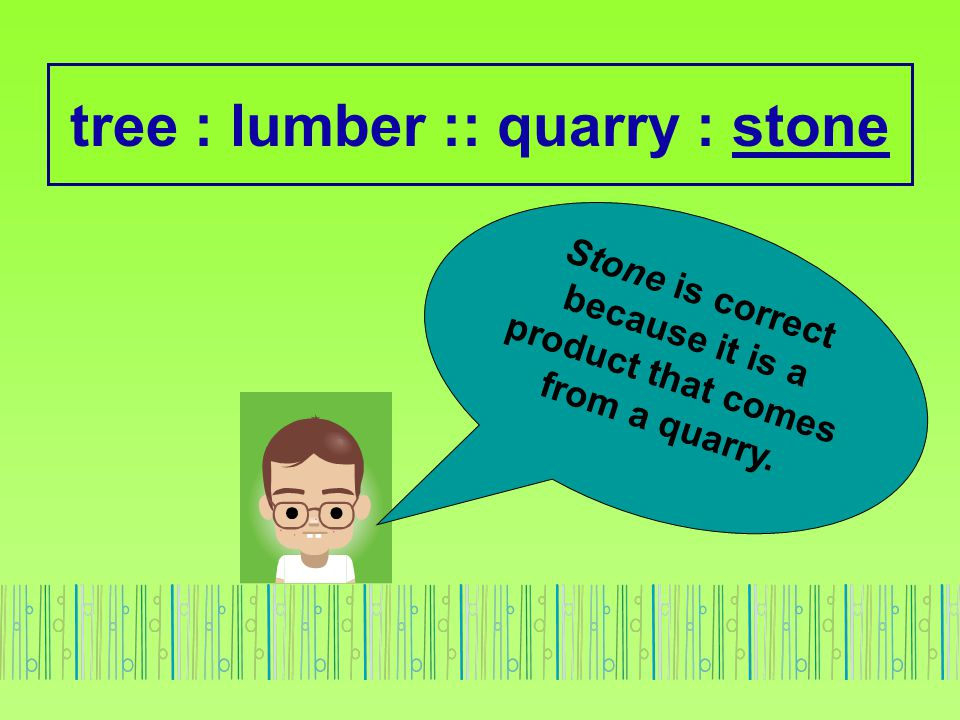 tree : lumber :: quarry : stone Stone is correct because it is a product that comes from a quarry.