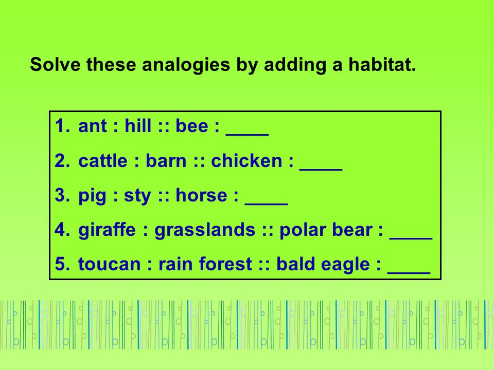 Solve these analogies by adding a habitat. 1. ant : hill :: bee : ____ 2. cattle : barn :: chicken : ____ 3. pig : sty :: horse : ____ 4. giraffe : gr