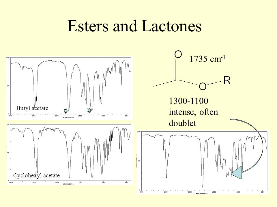 Esters and Lactones 1735 cm -1 1300-1100 intense, often doublet Butyl acetate Cyclohexyl acetate