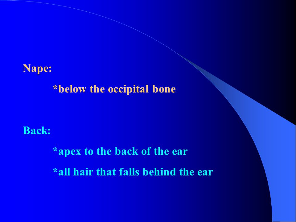 Nape: *below the occipital bone Back: *apex to the back of the ear *all hair that falls behind the ear