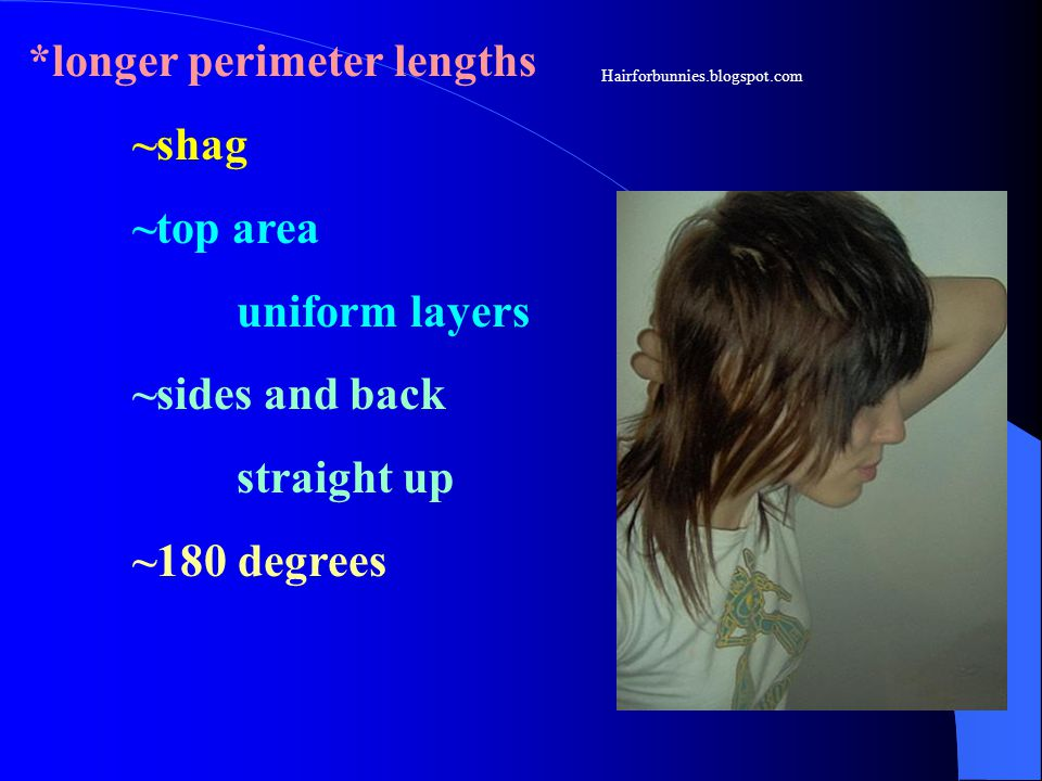 *longer perimeter lengths ~shag ~top area uniform layers ~sides and back straight up ~180 degrees Hairforbunnies.blogspot.com
