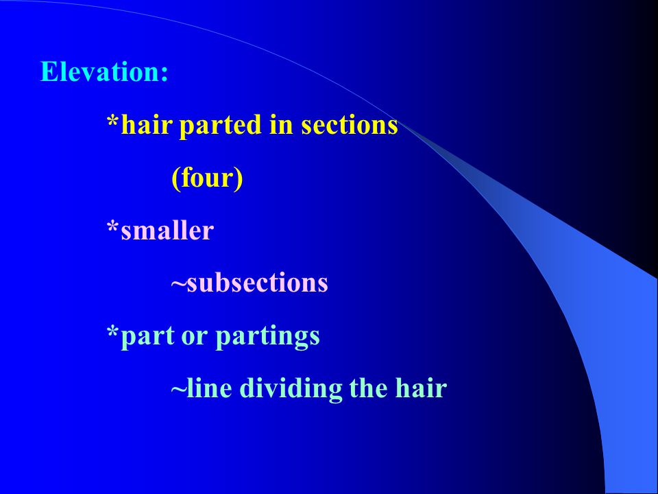 Elevation: *hair parted in sections (four) *smaller ~subsections *part or partings ~line dividing the hair