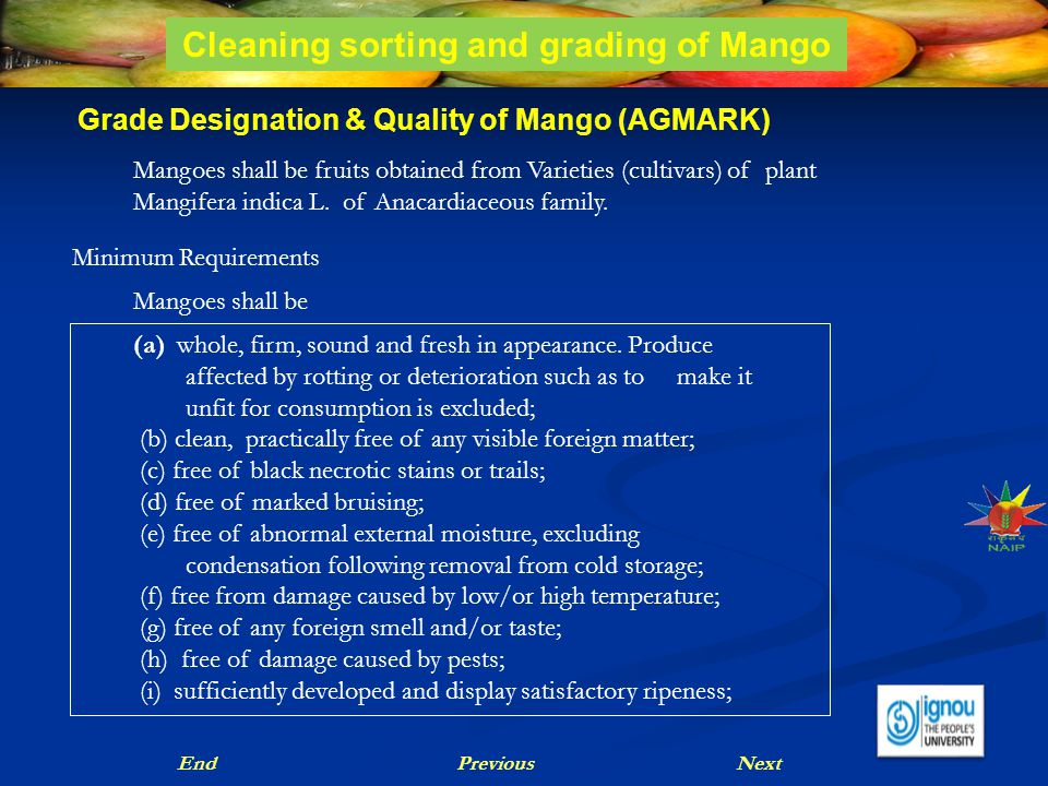 Grade Designation & Quality of Mango (AGMARK) Mangoes shall be fruits obtained from Varieties (cultivars) of plant Mangifera indica L. of Anacardiaceo
