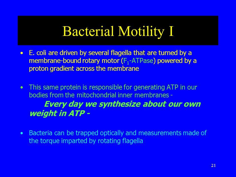 21 Bacterial Motility I E.
