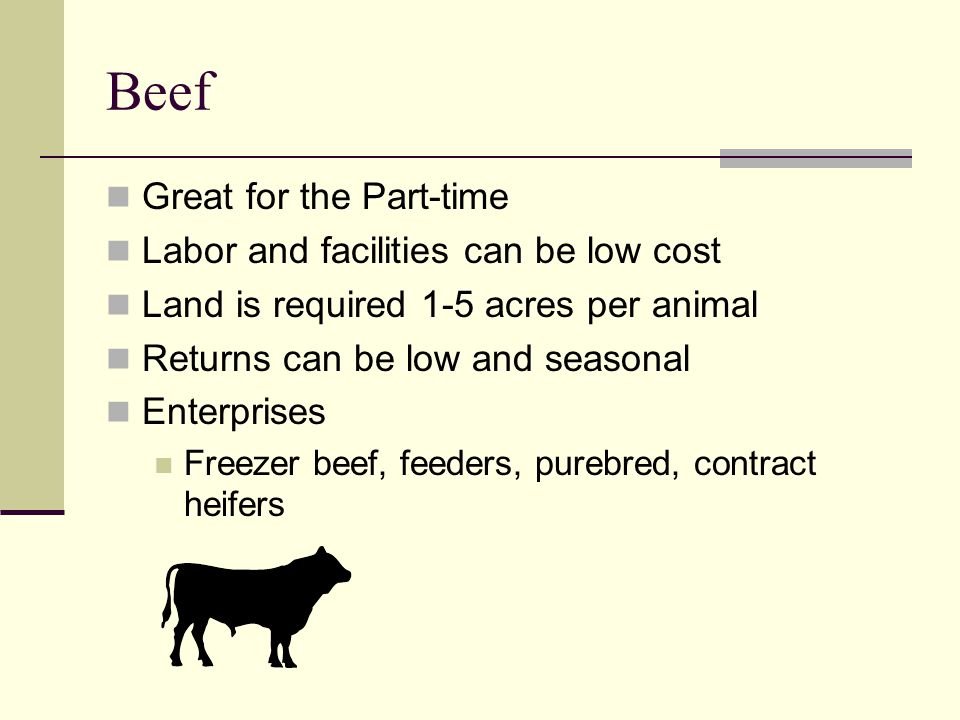 Beef Great for the Part-time Labor and facilities can be low cost Land is required 1-5 acres per animal Returns can be low and seasonal Enterprises Freezer beef, feeders, purebred, contract heifers