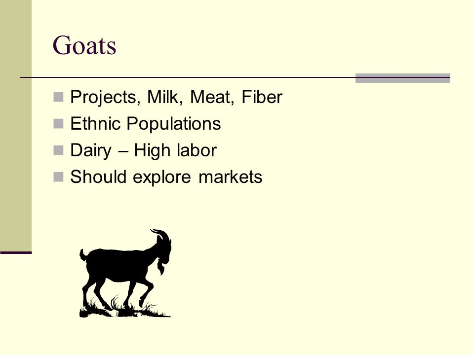 Goats Projects, Milk, Meat, Fiber Ethnic Populations Dairy – High labor Should explore markets
