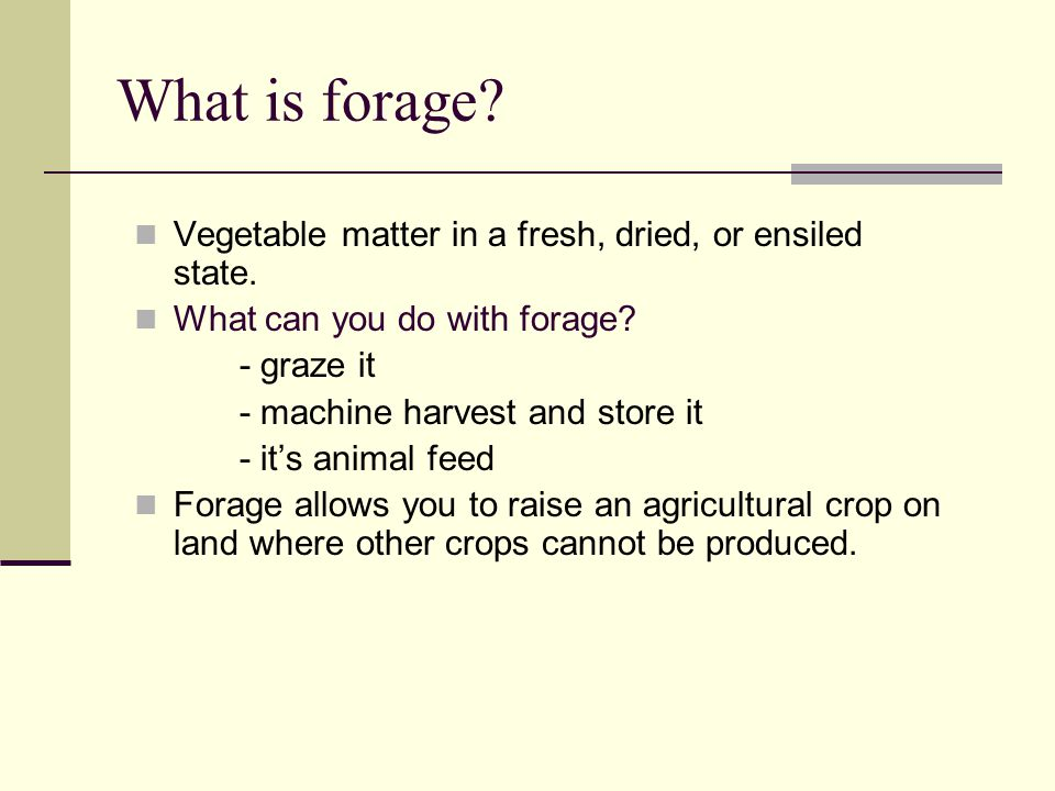What is forage. Vegetable matter in a fresh, dried, or ensiled state.