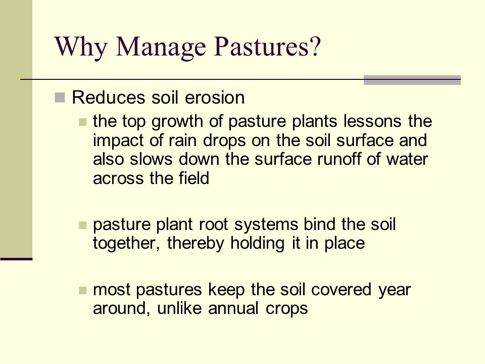 Reduces soil erosion the top growth of pasture plants lessons the impact of rain drops on the soil surface and also slows down the surface runoff of water across the field pasture plant root systems bind the soil together, thereby holding it in place most pastures keep the soil covered year around, unlike annual crops