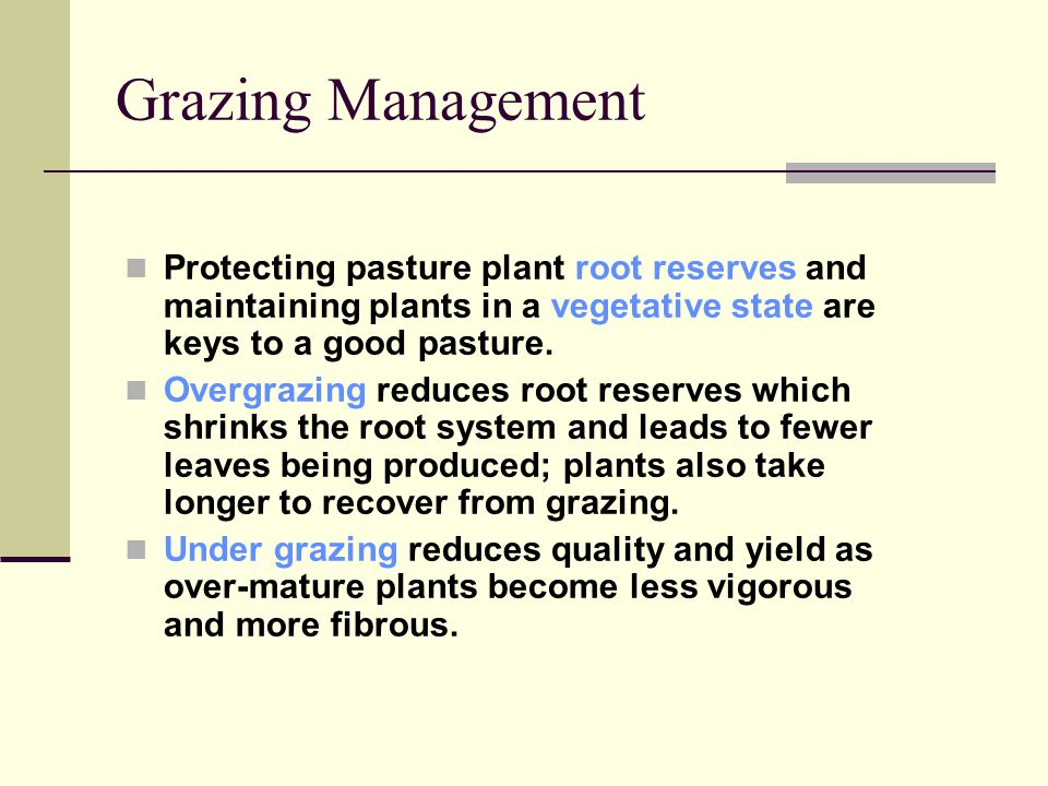 Protecting pasture plant root reserves and maintaining plants in a vegetative state are keys to a good pasture.