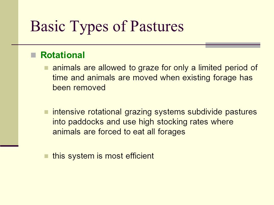 Basic Types of Pastures Rotational animals are allowed to graze for only a limited period of time and animals are moved when existing forage has been removed intensive rotational grazing systems subdivide pastures into paddocks and use high stocking rates where animals are forced to eat all forages this system is most efficient