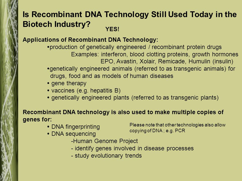 Is Recombinant DNA Technology Still Used Today in the Biotech Industry.