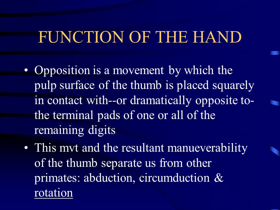 MUSCLES OF THE WRIST AND HAND (3) muscles act only on the little finger: abductor digiti minimi, flexor digiti minimi brevis, & opponens digiti minimi (8) muscles act on the thumb, (4) are intrinsic to the hand (flexor pollicis brevis, opponens pollicis, abductor pollicis brevis, & adductor pollicis) extrinsic muscles are (extensor pollicis longus, extensor pollicis brevis, abductor pollicis longus, & flexor pollicis longus