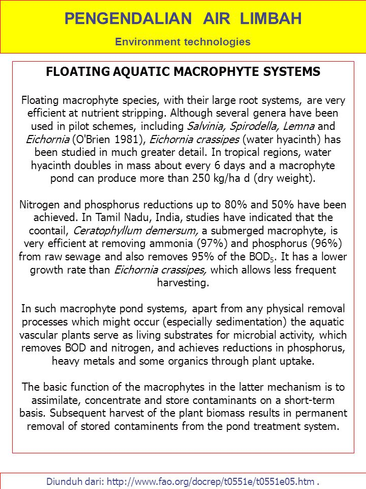 Diunduh dari: http://www.fao.org/docrep/t0551e/t0551e05.htm. FLOATING AQUATIC MACROPHYTE SYSTEMS Floating macrophyte species, with their large root sy