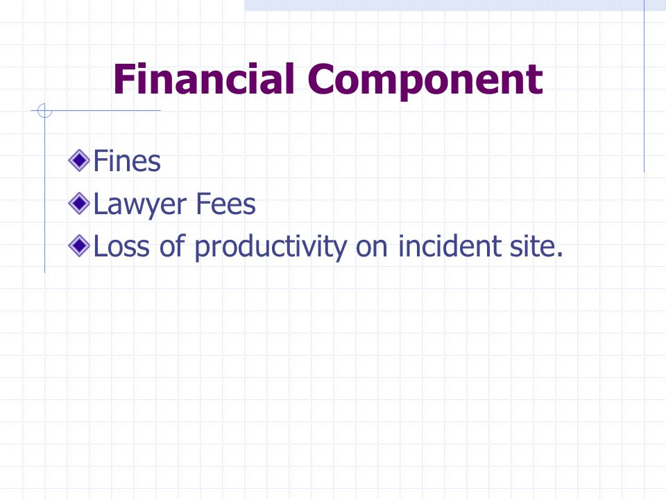 Financial Component Fines Lawyer Fees Loss of productivity on incident site.