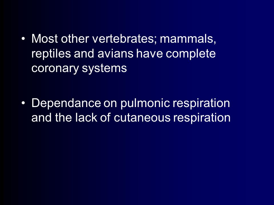 Most other vertebrates; mammals, reptiles and avians have complete coronary systems Dependance on pulmonic respiration and the lack of cutaneous respiration