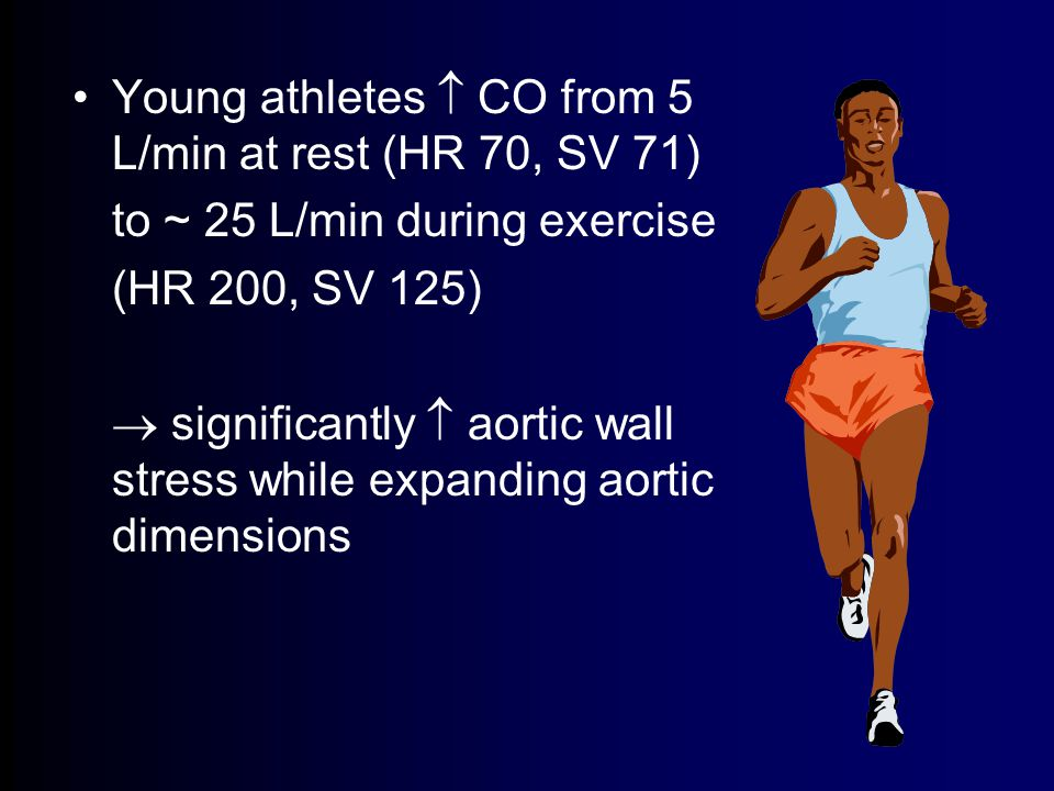 Young athletes  CO from 5 L/min at rest (HR 70, SV 71) to ~ 25 L/min during exercise (HR 200, SV 125)  significantly  aortic wall stress while expanding aortic dimensions