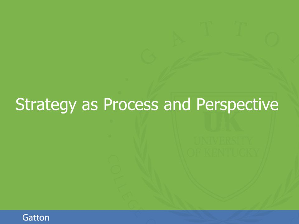 Page 2 Strategy as Process and Perspective