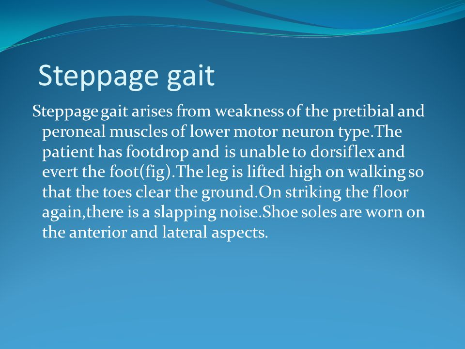 Steppage gait Steppage gait arises from weakness of the pretibial and peroneal muscles of lower motor neuron type.The patient has footdrop and is unab