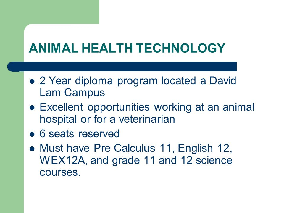 ANIMAL HEALTH TECHNOLOGY 2 Year diploma program located a David Lam Campus Excellent opportunities working at an animal hospital or for a veterinarian