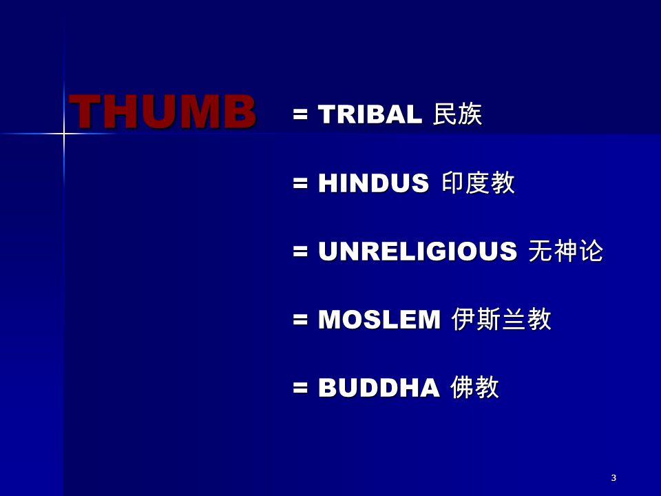 3 = TRIBAL 民族 = HINDUS 印度教 = UNRELIGIOUS 无神论 = MOSLEM 伊斯兰教 = BUDDHA 佛教 THUMB