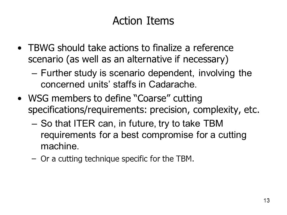 13 Action Items TBWG should take actions to finalize a reference scenario (as well as an alternative if necessary) –Further study is scenario dependent, involving the concerned units' staffs in Cadarache.