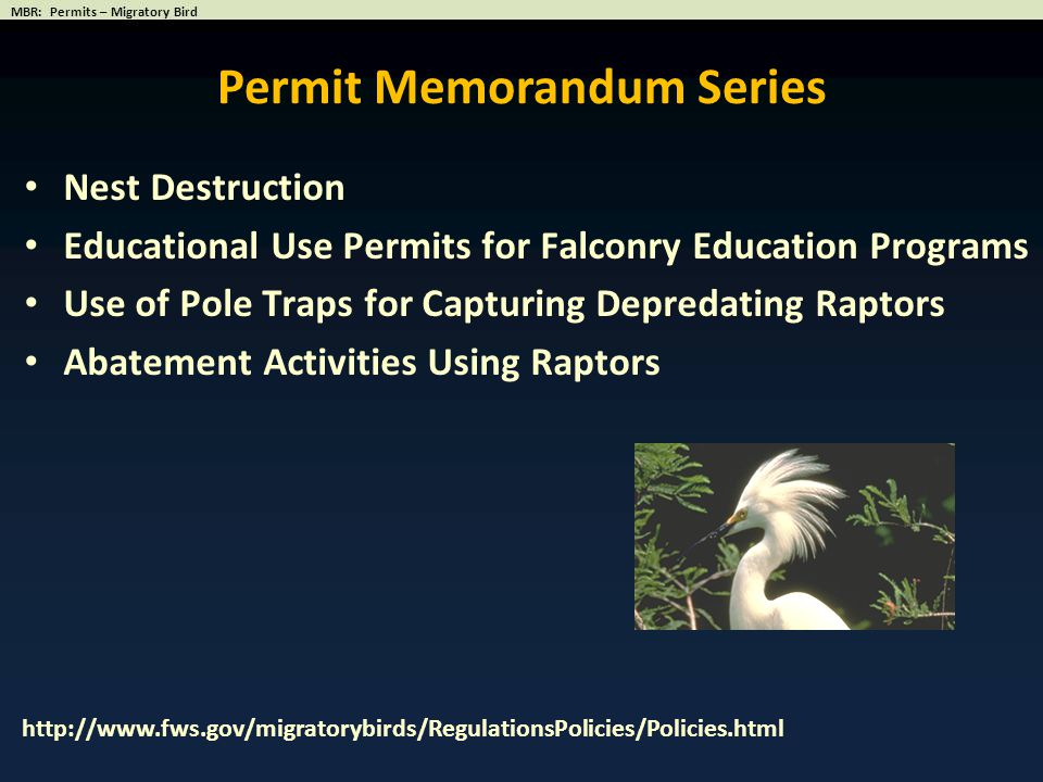 Nest Destruction Educational Use Permits for Falconry Education Programs Use of Pole Traps for Capturing Depredating Raptors Abatement Activities Usin