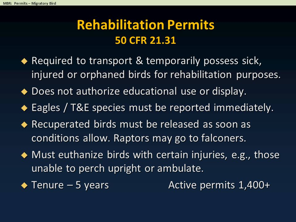  Required to transport & temporarily possess sick, injured or orphaned birds for rehabilitation purposes.  Does not authorize educational use or dis