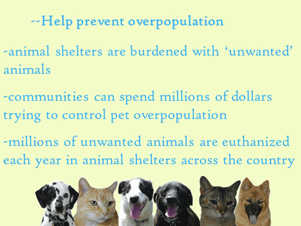 --Help prevent overpopulation -animal shelters are burdened with 'unwanted' animals -communities can spend millions of dollars trying to control pet overpopulation -millions of unwanted animals are euthanized each year in animal shelters across the country