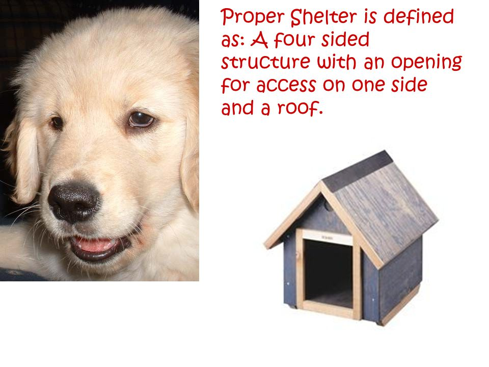 Proper Shelter is defined as: A four sided structure with an opening for access on one side and a roof.