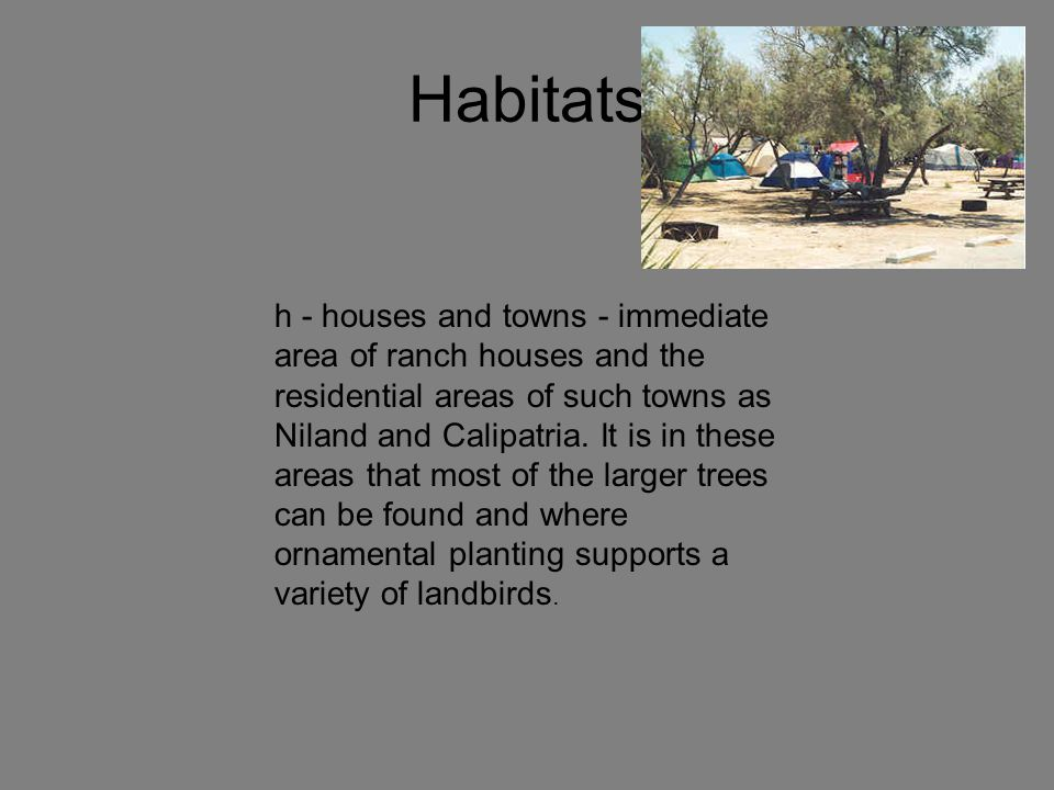 Habitats h - houses and towns - immediate area of ranch houses and the residential areas of such towns as Niland and Calipatria.