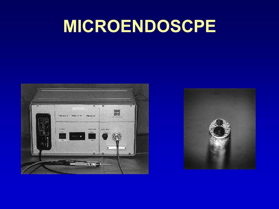 MICROENDOSCPE