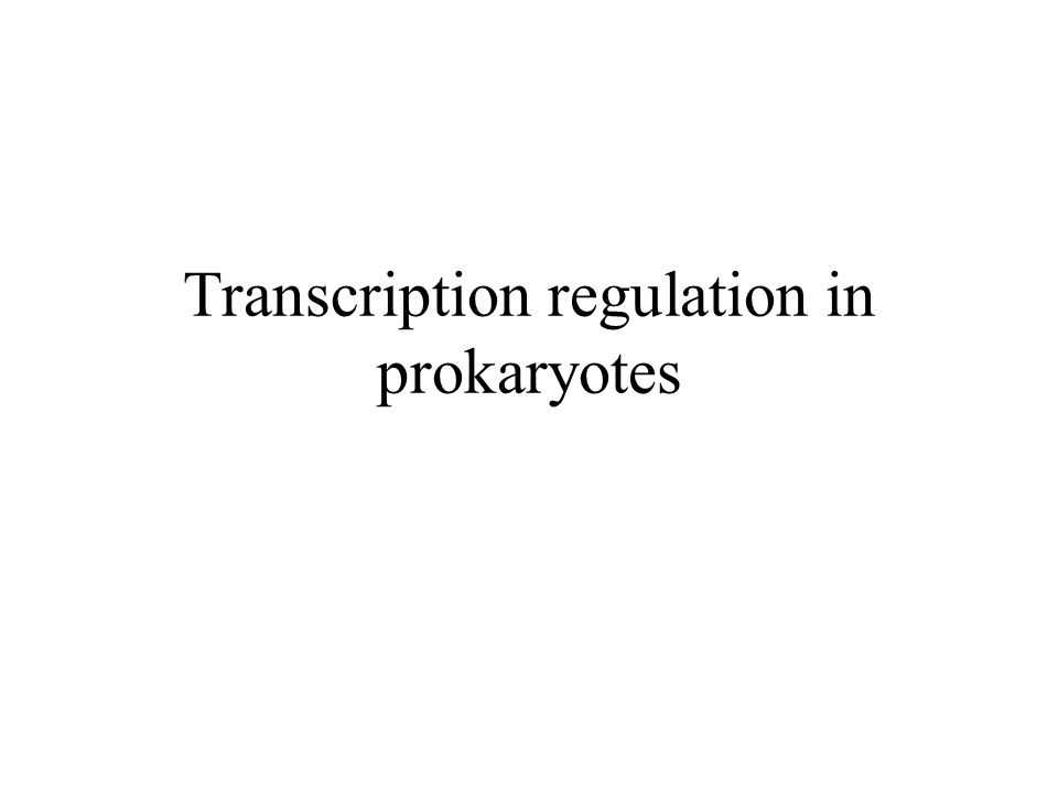 Transcription regulation in prokaryotes