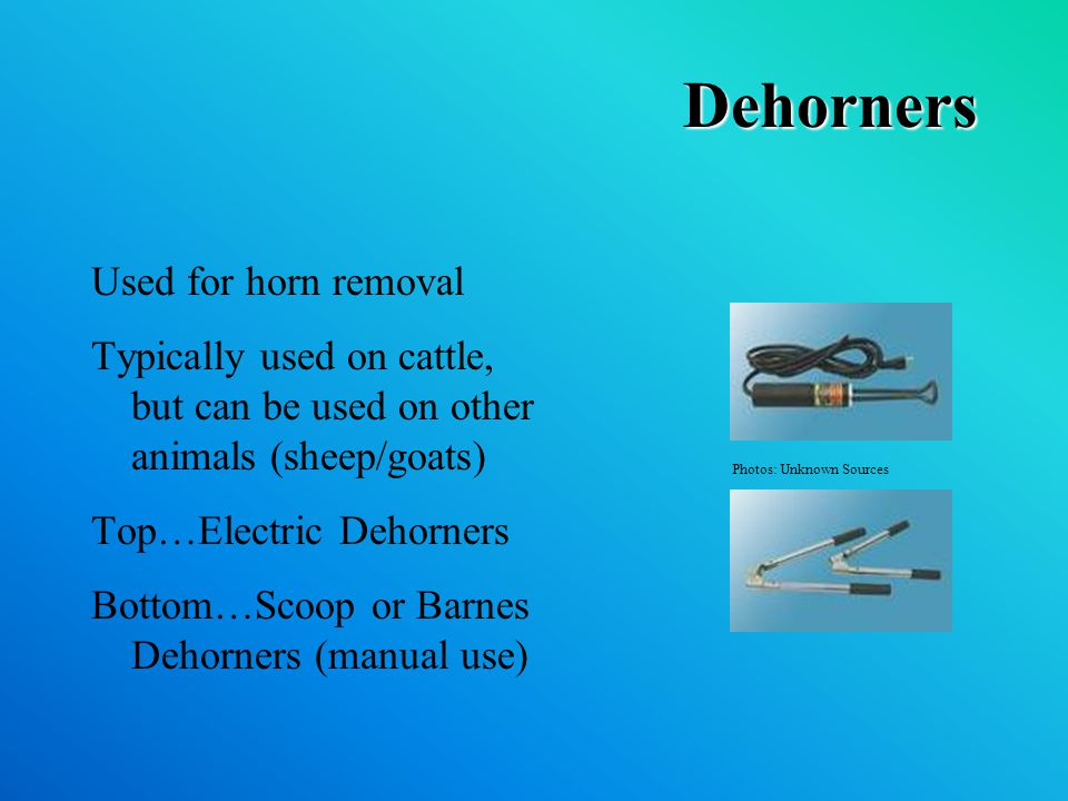 Dehorners Used for horn removal Typically used on cattle, but can be used on other animals (sheep/goats) Top…Electric Dehorners Bottom…Scoop or Barnes Dehorners (manual use) Photos: Unknown Sources