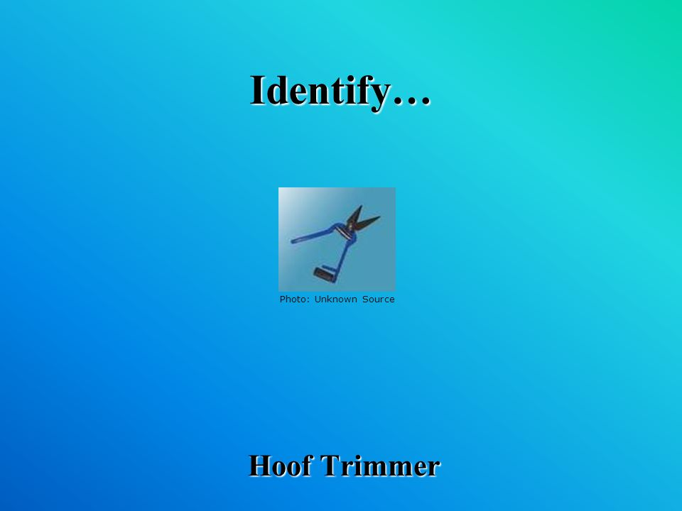 Identify… Hoof Trimmer Photo: Unknown Source