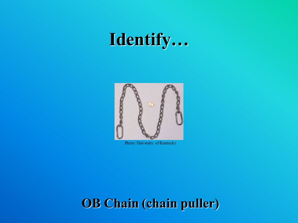 Identify… OB Chain (chain puller) Photo: University of Kentucky