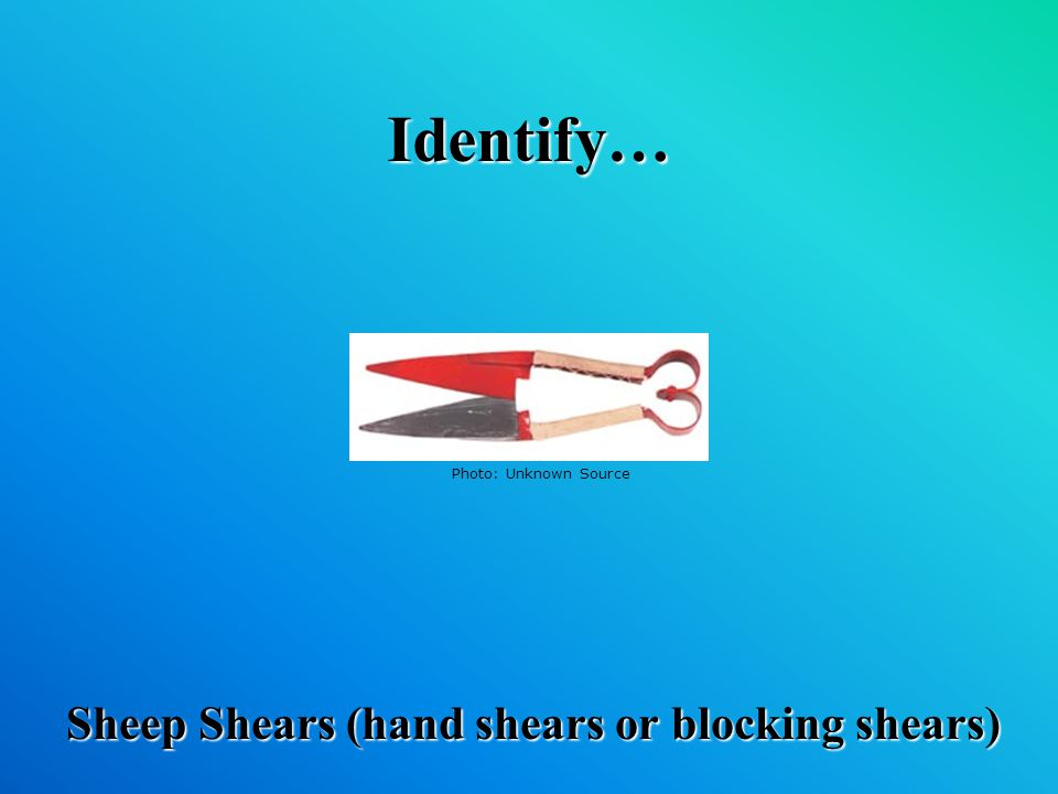 Identify… Sheep Shears (hand shears or blocking shears) Photo: Unknown Source