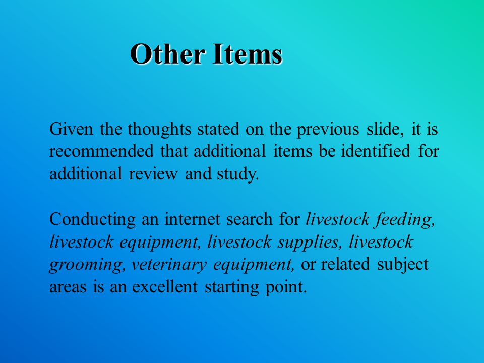 Other Items Given the thoughts stated on the previous slide, it is recommended that additional items be identified for additional review and study.