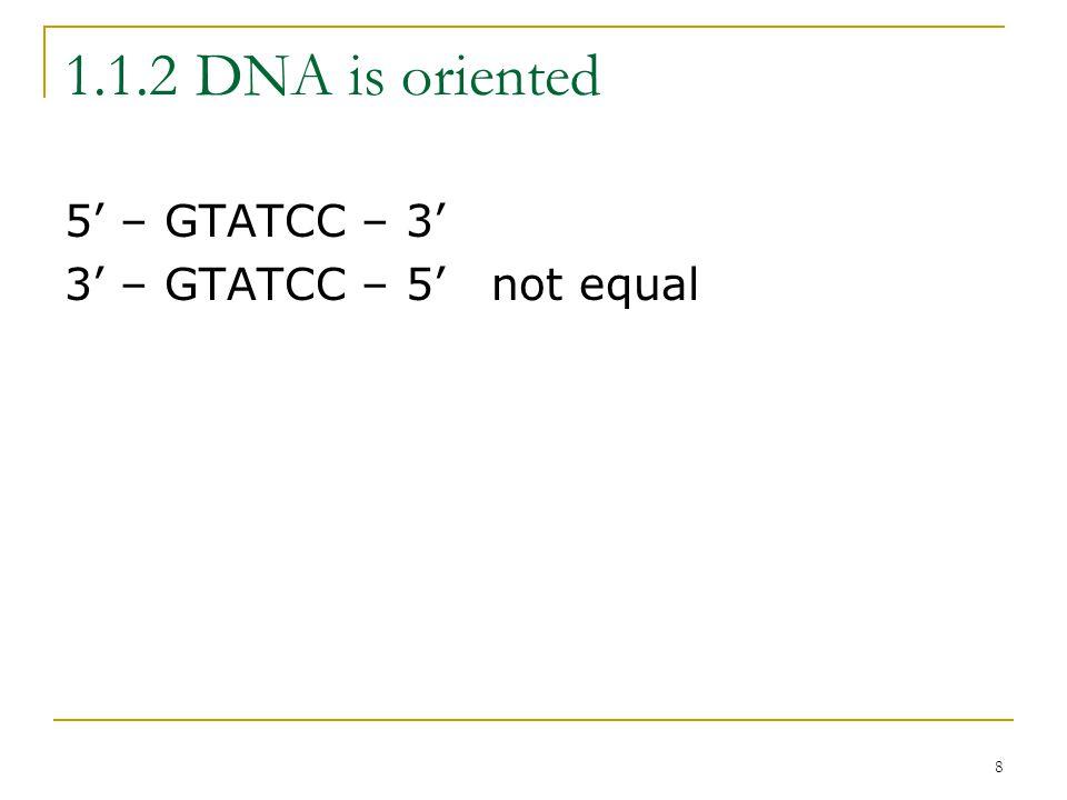 8 1.1.2 DNA is oriented 5' – GTATCC – 3' 3' – GTATCC – 5'not equal
