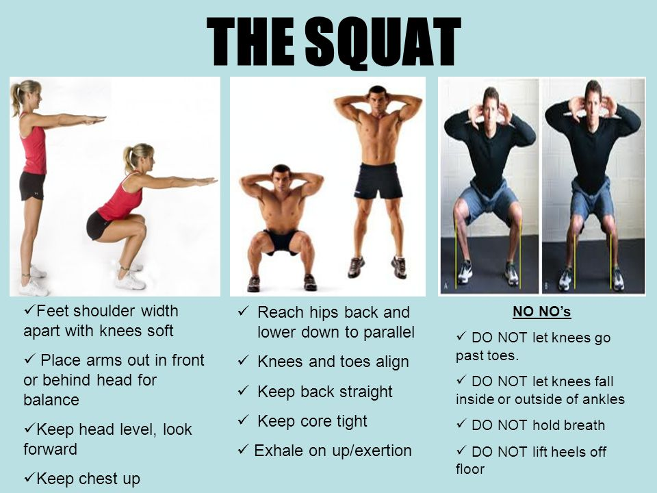 THE SQUAT Feet shoulder width apart with knees soft Place arms out in front or behind head for balance Keep head level, look forward Keep chest up NO NO's DO NOT let knees go past toes.