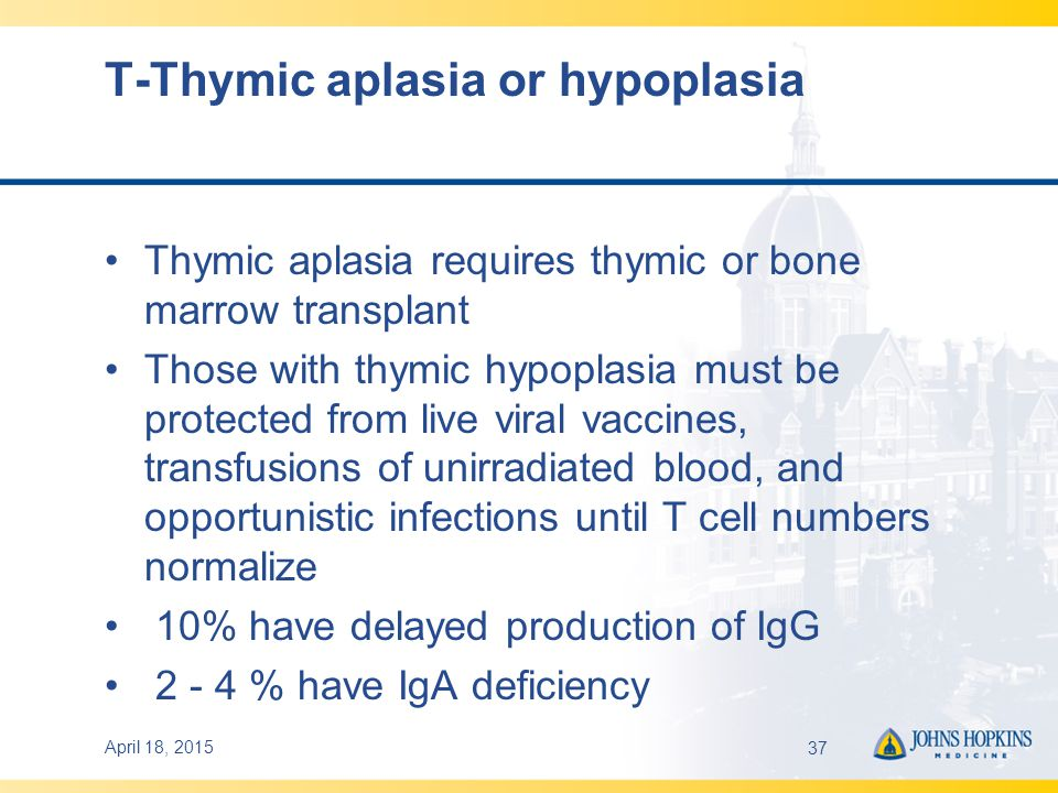 April 18, 201537 T-Thymic aplasia or hypoplasia Thymic aplasia requires thymic or bone marrow transplant Those with thymic hypoplasia must be protected from live viral vaccines, transfusions of unirradiated blood, and opportunistic infections until T cell numbers normalize 10% have delayed production of IgG 2 - 4 % have IgA deficiency