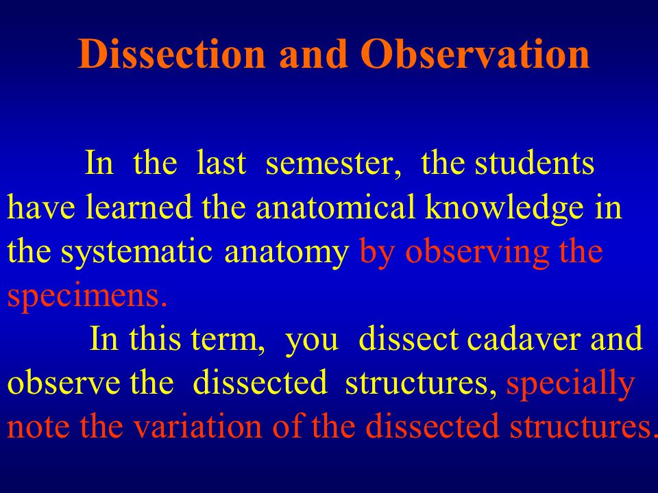 Dissection and Observation In the last semester, the students have learned the anatomical knowledge in the systematic anatomy by observing the specime