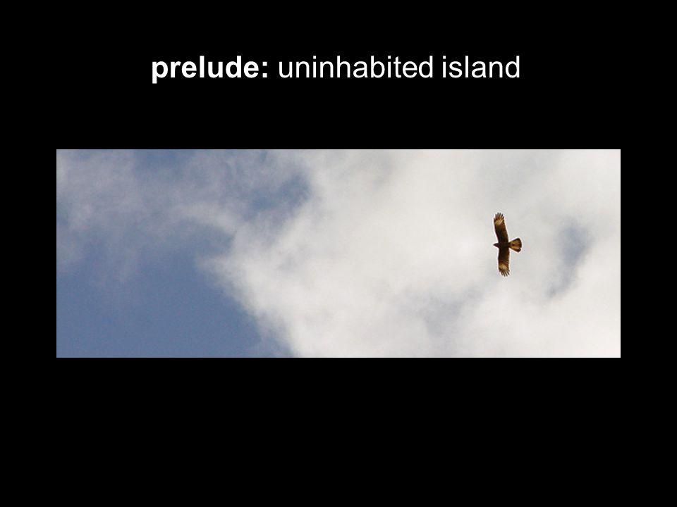 prelude: uninhabited island