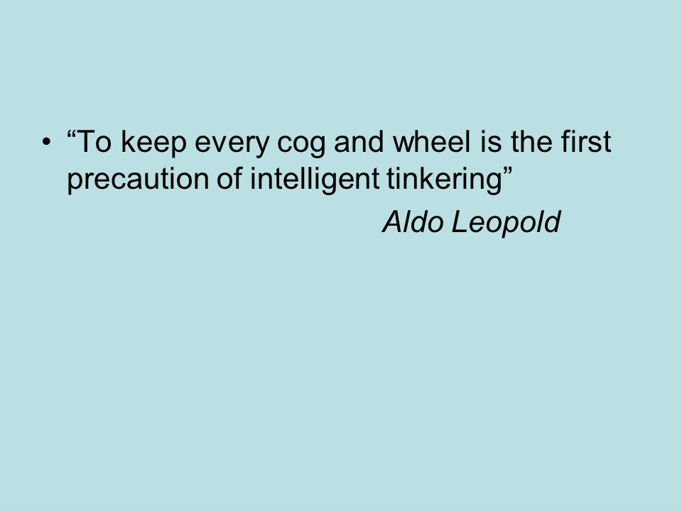 """To keep every cog and wheel is the first precaution of intelligent tinkering"" Aldo Leopold"