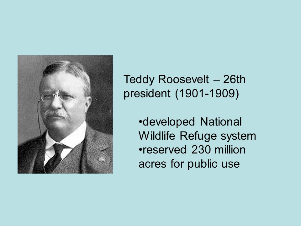 Teddy Roosevelt – 26th president (1901-1909) developed National Wildlife Refuge system reserved 230 million acres for public use