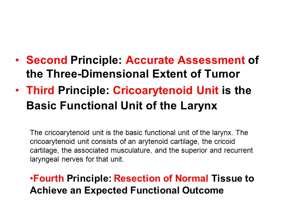 Second Principle: Accurate Assessment of the Three-Dimensional Extent of Tumor Third Principle: Cricoarytenoid Unit is the Basic Functional Unit of th
